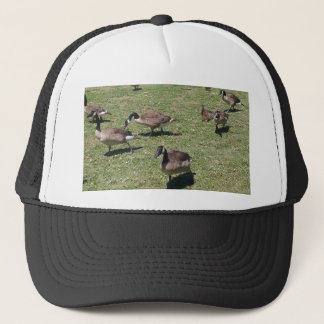 Ducks In Nature Trucker Hat