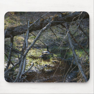 Ducks In The Woods, Mousepad