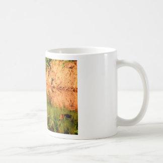 DUCKS IN WATER QUEENSLAND AUSTRALIA COFFEE MUG