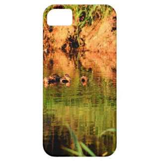 DUCKS IN WATER QUEENSLAND AUSTRALIA iPhone 5 COVER