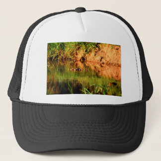 DUCKS IN WATER QUEENSLAND AUSTRALIA TRUCKER HAT
