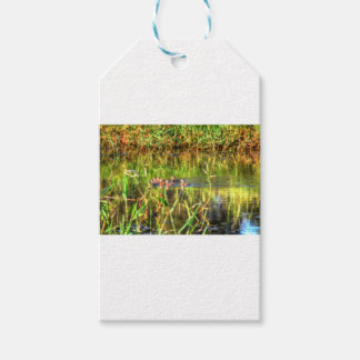 DUCKS IN WTAER AUSTRALIA ART EFFECTS GIFT TAGS