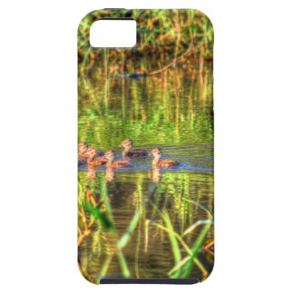 DUCKS IN WTAER AUSTRALIA ART EFFECTS iPhone 5 CASE