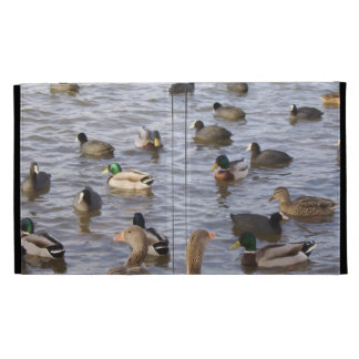 Ducks iPad Cases