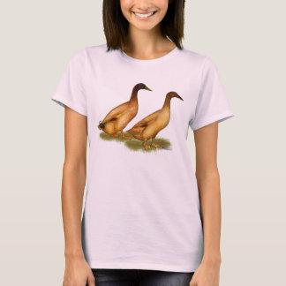 Ducks:  Khaki Campbell T-Shirt
