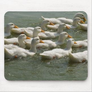 ducks mouse mats