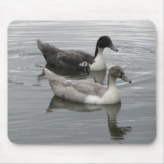 Ducks Mouse Pads