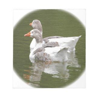 ducks notepad