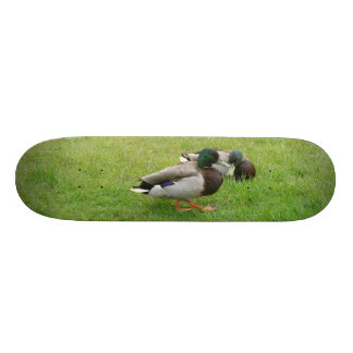 Ducks on a grass 18.1 cm old school skateboard deck