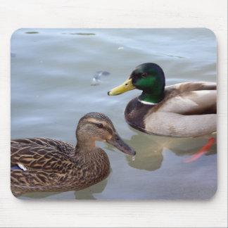 Ducks on a Pond Mousepad