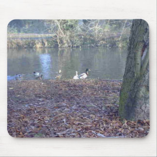 Ducks on a River Mouse Mats