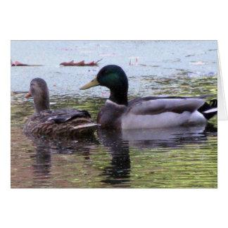 Ducks on Unity Pond Card