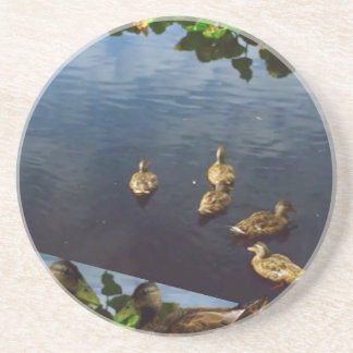 DUCKS pond nature printed gifts KIDS love bird pet Beverage Coaster