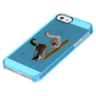 Ducks:  Silver Appleyard Clear iPhone SE/5/5s Case