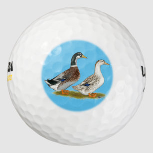 Duck Golf Balls | Zazzle AU