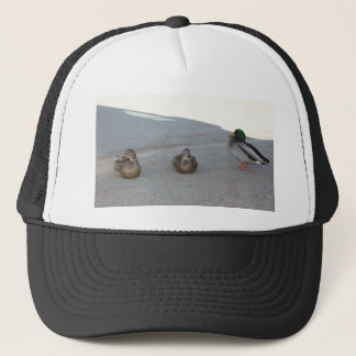 Ducks Trucker Hat