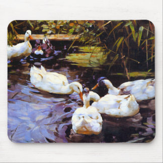 Ducks Wading in a Pond Mousepads