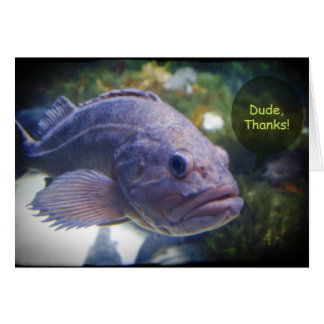 Dude Thanks Fish With Black Border Thank You Card