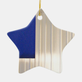 Due Collection metal by Roger Project Ceramic Star Decoration