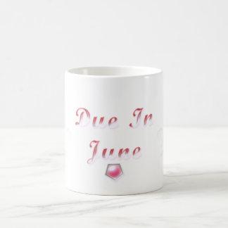 Due In June Mug