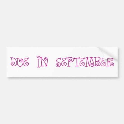 Due In September Bumper Sticker