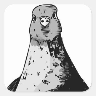 Dumb Birds Square Sticker