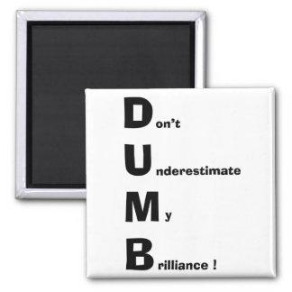 DUMB MAGNET