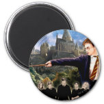 DUMBLEDORE'S ARMY™ 3 MAGNET