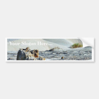 Dunes At Sunset Bumper Stickers