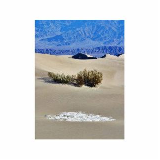 Dunes Desert Acrylic Cut Outs