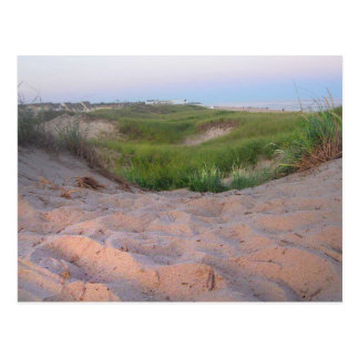Dunes in Montauk Postcard
