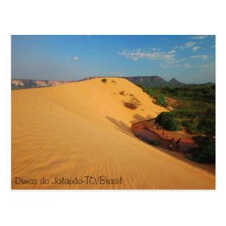 Dunes of the Jalapão Postcard