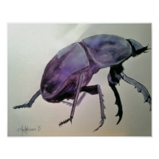 """""""Dung Beetle"""" Poster"""
