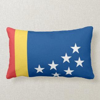 durham flag united state america north carolina throw pillows