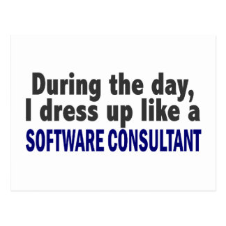 During The Day I Dress Up Software Consultant Postcard