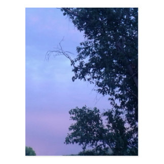 Dusk Sky Postcard