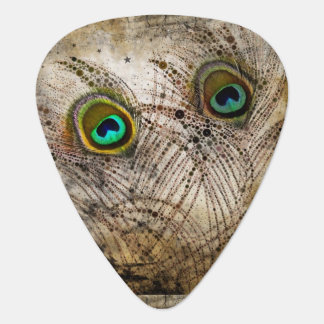 Dusty Peacock Feathers Guitar Picks Guitar Pick