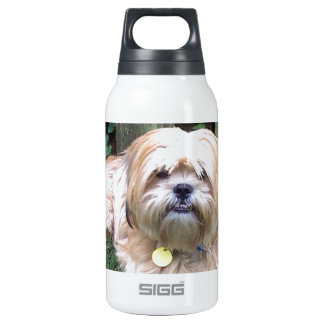 DUSTY - PUPPY MILL SURVIVOR 0.3 LITRE INSULATED SIGG THERMOS WATER BOTTLE
