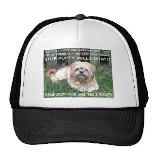 DUSTY - PUPPY MILL SURVIVOR HAT