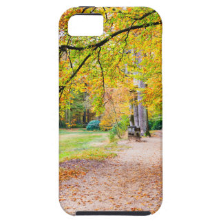 Dutch autumn landscape with footpath and tree iPhone 5 case