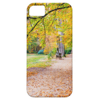 Dutch autumn landscape with footpath and tree iPhone 5 cover
