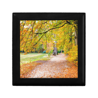 Dutch autumn landscape with footpath and tree small square gift box