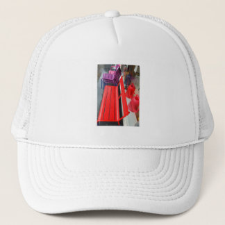 Dutch Photograph Window Reflection and Bench Trucker Hat
