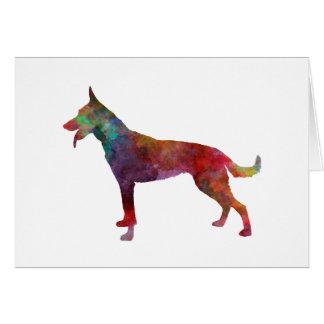 Dutch Shepherd Dog in watercolor Card