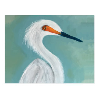 """Dutchess"" Egret Painting Postcard"