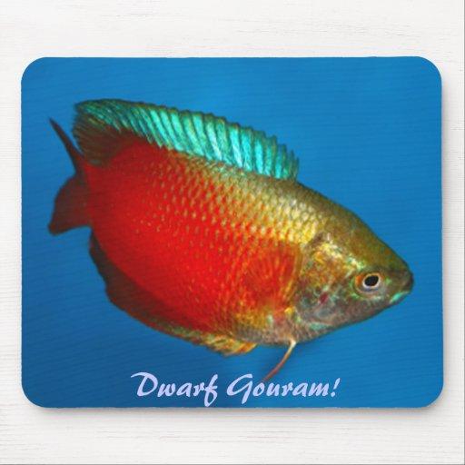 Dwarf Gouram Mousepad