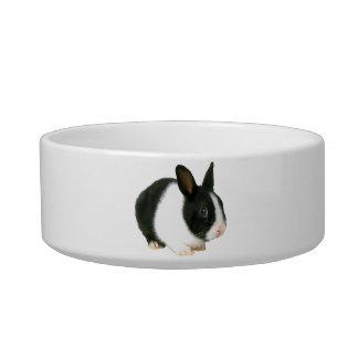 Dwarf Rabbit Bunny Pet Bowl