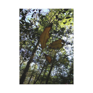 dwindling leaf stretched canvas print