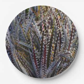 Dyckia delight 9 inch paper plate