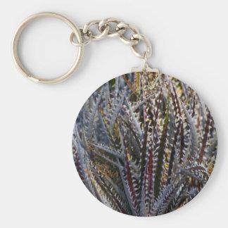 Dyckia delight key ring